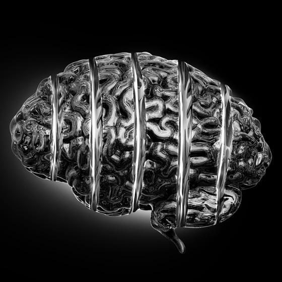 brain_germany_1