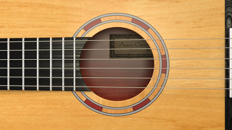 acoustic guitar_02